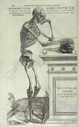 L0030894 Vesalius, De humani corporis fabrica, 1543